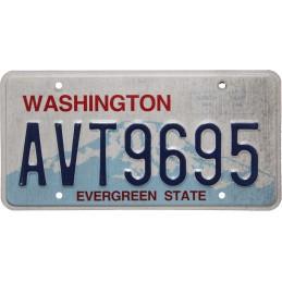 Washington AVT9695 -...